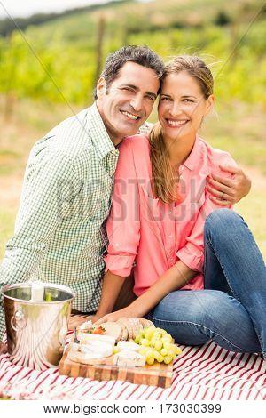 Portrait of happy couple relaxing on a blanket in vineyard