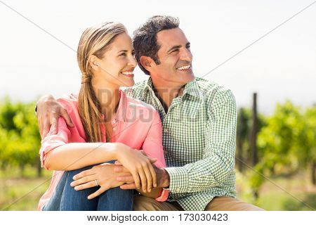 Happy couple sitting in vineyard on a sunny day