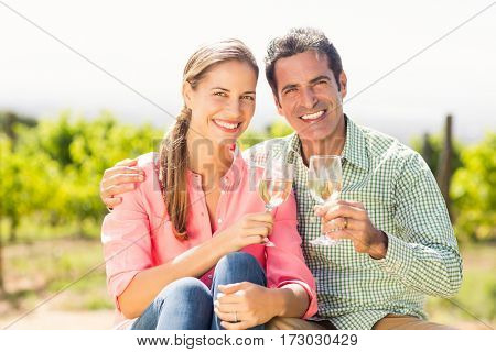 Portrait of happy couple holding glasses of wine in vineyard