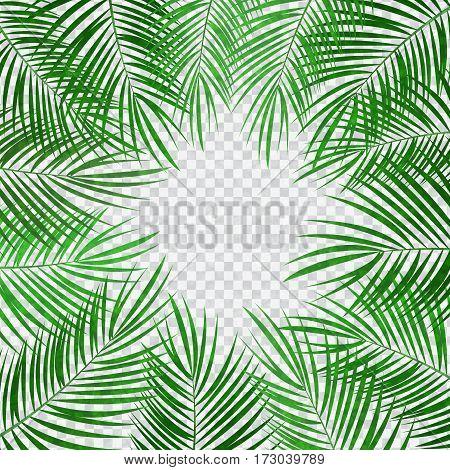green Palm Leaf Vector Background Illustration EPS10