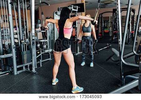 Young Athletic Woman In The Gym