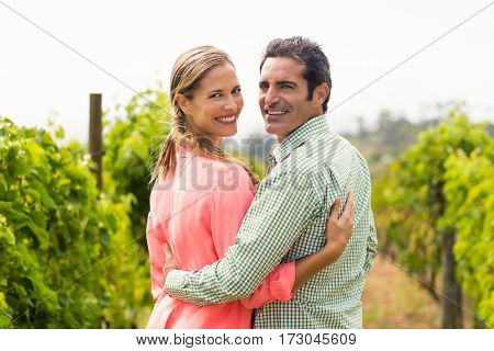 Portrait of happy couple standing with arm around in vineyard