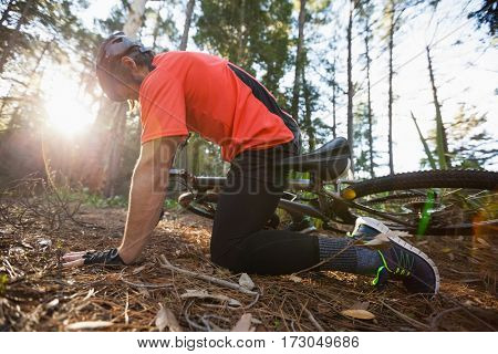 Male mountain biker fallen from his bicycle in the forest on a sunny day