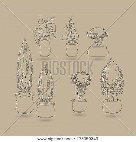 Vector set of black doodle hand drawn line art house plants in ceramic pots on taupe. Flowers for interior and  garden backgrounds, floral design.