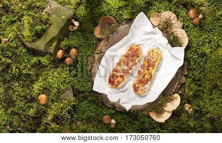 baguette food on stump cloth background nature moss fungus grass green rays of light shadow summer