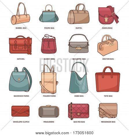 Vector set with types of bags, clutches and purses. Collection of modern fashion female accessory. Fashionable and trendy handbags. Illustration isolated on white. Design elements in flat style
