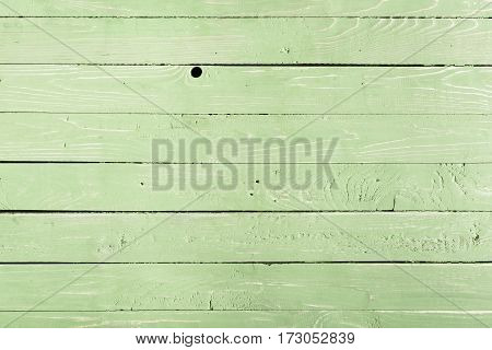 Light green wooden background with horizontal planks