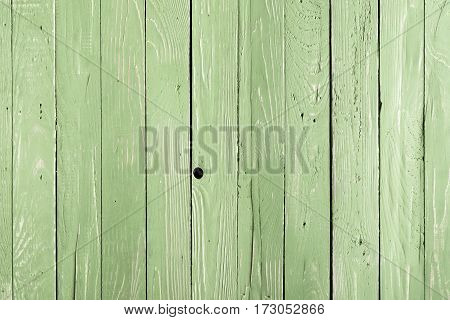 Light green wooden background with vertical planks
