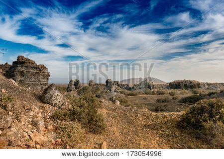 picturesque landscape of Lanzarotte desert with plants and blue sky on the background