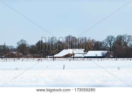 Dutch Farmland With Farm Covered In Snow. Geesteren. Achterhoek. Gelderland. The Netherlands.