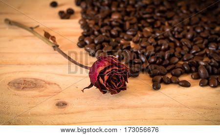 The Arabica And Robusta Coffee Beans, Selective Focus, Copy Space, Can Be Used As A Background