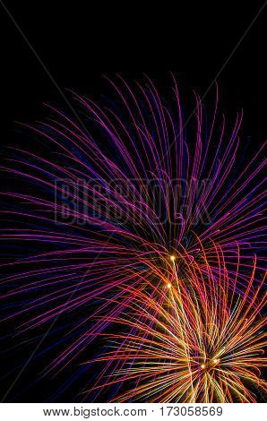 Colorful fireworks shot off in the night sky