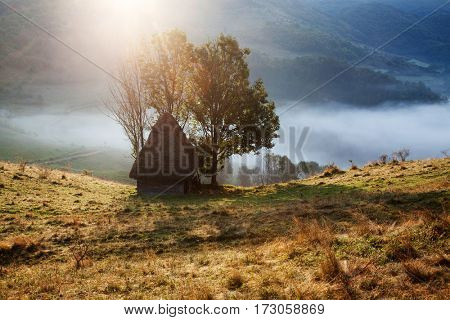 misty spring morning in Apuseni mountains - rural landscape with small cottage