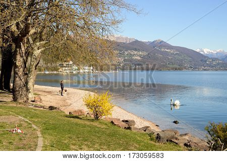 Porto Ceresio Italy - 6 april2015: Woman walking with her dog on the waterfront of Porto Ceresio on lake Lugano