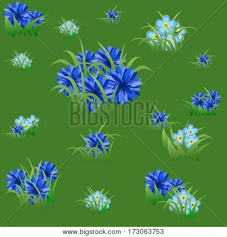 Floral seamless pattern with blue cornflowers and grass on summer green background. Vector illustration