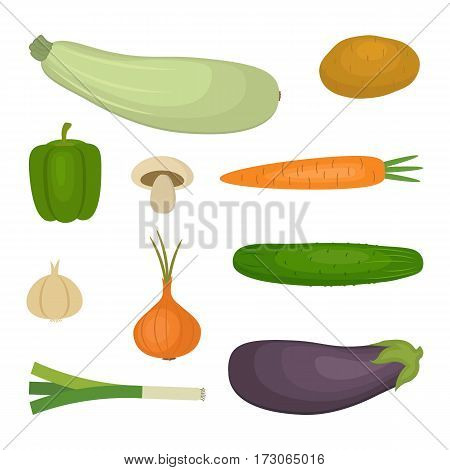 Set of vegetables, isolated on a white background. There is a potato, a cucumber, eggplant, zucchini, onion, garlic, mushroom, carrot, sweet pepper, in the picture. Vector illustration.