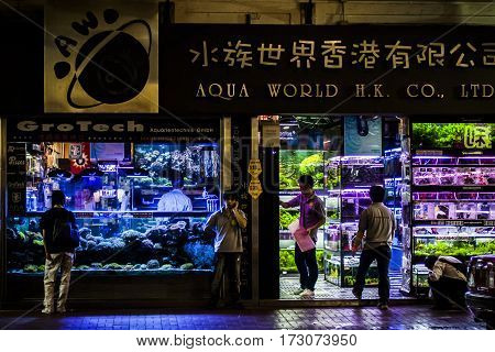 Hong Kong Goldfish Store