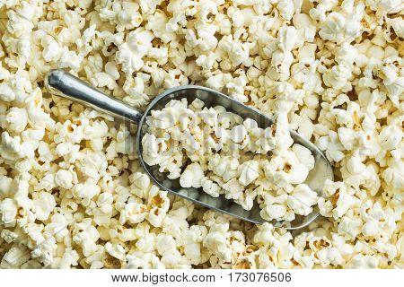 The tasty popcorn in metal scoop.