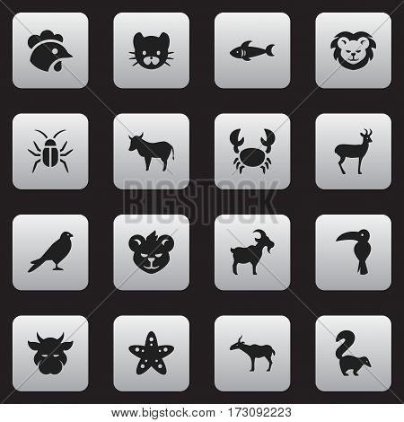 Set Of 16 Editable Nature Icons. Includes Symbols Such As Gazelle, Livestock, Sea Star And More. Can Be Used For Web, Mobile, UI And Infographic Design.