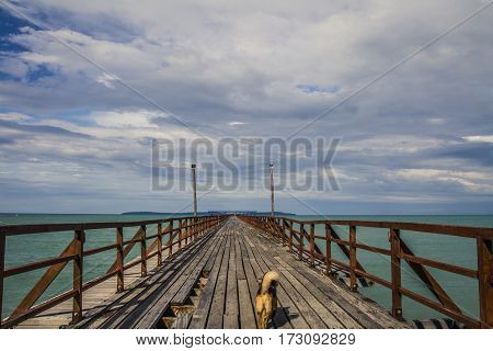 Wood Pier Heading To The Sea