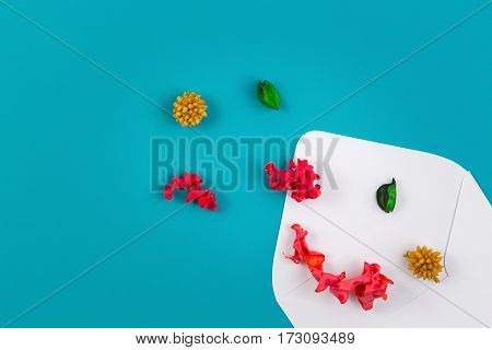 White open envelop and colorful dried flowers, plants on blue background. Top view, flat lay