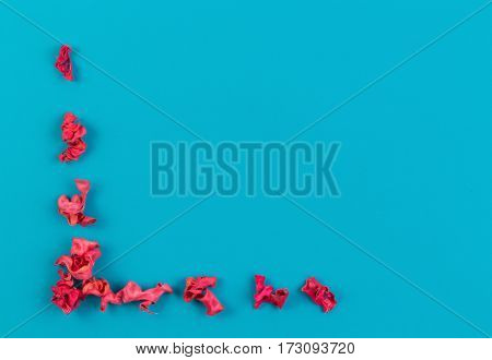 Pink dried flower plants border frame on blue background. Top view, flat lay. Copy space in the middle