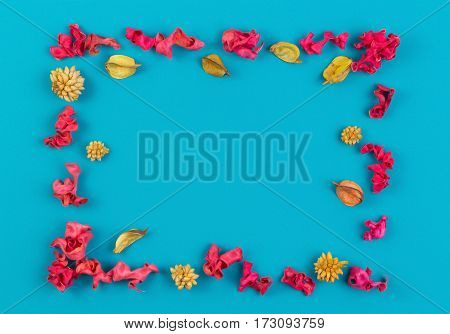 Pink and yellow dried flower plants rectangular border frame on blue background. Top view, flat lay. Copy space in the middle