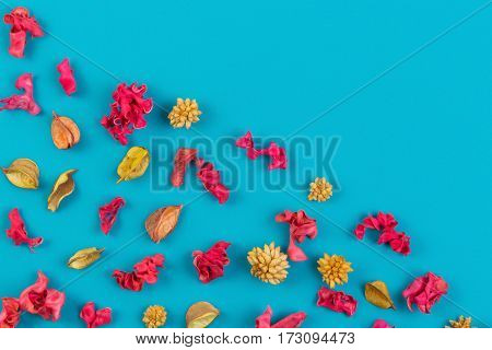 Pattern from dried flowers, exotic plants on blue background. Top view, flat lay. Copy space in the middle