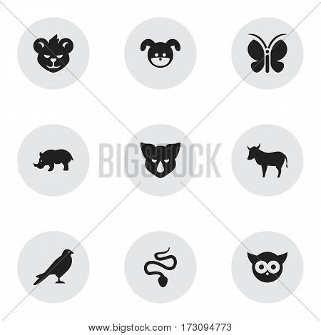Set Of 9 Editable Zoo Icons. Includes Symbols Such As Serpent, Moth, Puppy And More. Can Be Used For Web, Mobile, UI And Infographic Design.