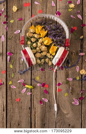 Top view of headphones and various beautiful flowers and petals on wooden table Spring floral composition