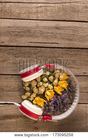 Top view of Spring floral composition with headphones and variety of flowers and leaves on wooden table