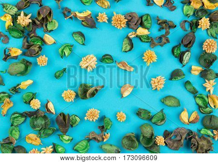 Dried flowers plants and leaves composition as pattern on blue background. Top view, flat lay