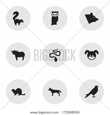 Set Of 9 Editable Zoo Icons. Includes Symbols Such As Ox, Grizzly, Owl And More. Can Be Used For Web, Mobile, UI And Infographic Design.