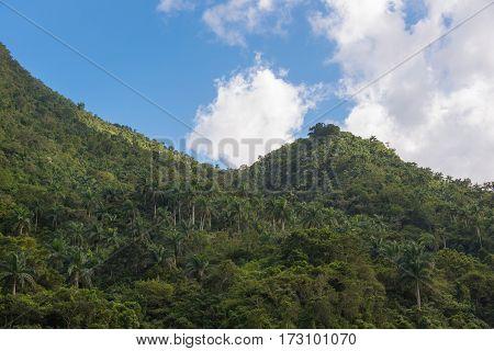 Hanabanilla Natural Reserve-cuba
