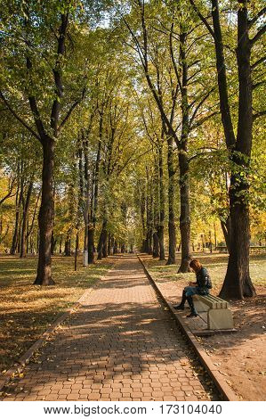 Autumn In  Moscow Parks, Russia