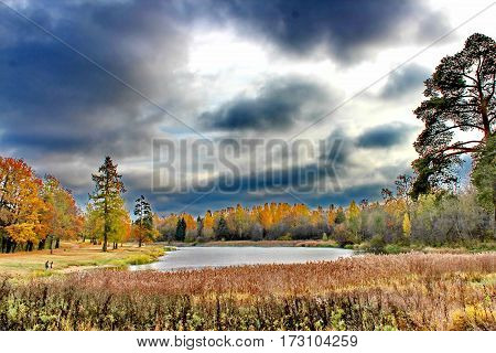 Beautiful romantic alley in a park with colorful trees and sunlight. autumn natural background Gatchina Beautiful romantic alley in a park with colorful trees and sunlight. autumn natural background Gatchina Beautiful romantic alley in a park with colorfu