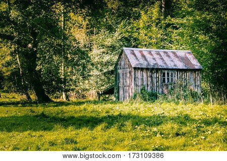 wooden shed in some woodlands with grass