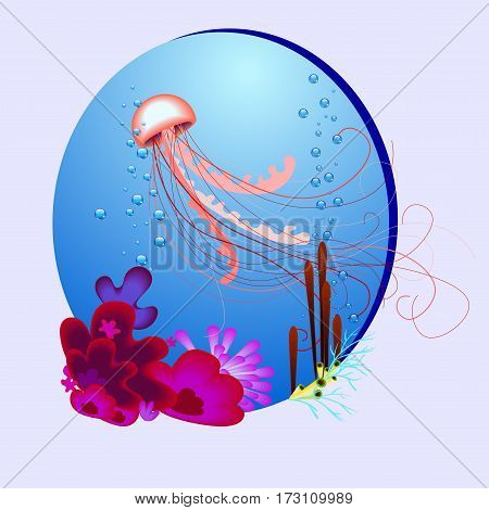 Underwater world with a jelly fish and corals