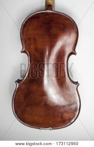 Violin on a white background. Beautiful photo violin. Violin Macro. The back side of the violin