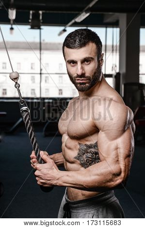 Handsome Fitness Model Train In The Gym Gain Muscle.
