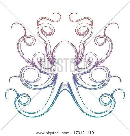 Colorful octopus sketch isolated on white background. Vector illustration