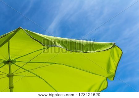 summer background green parasol with blue sky background