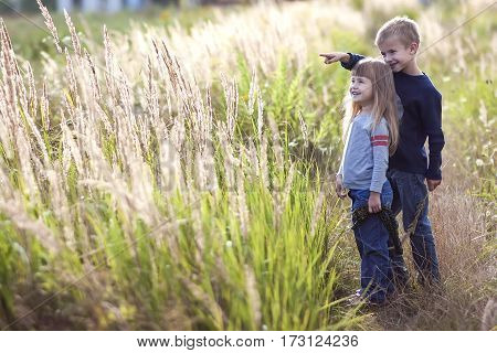 Little boy and little girl standing holding hands looking on horizont. Rear view.
