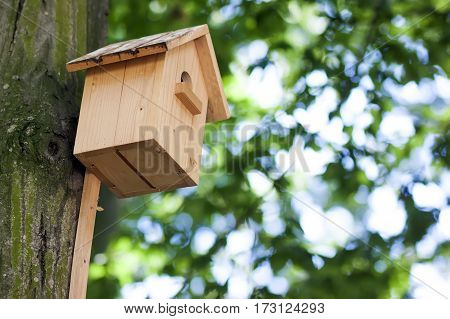 Wooden yellow bird house or nesting box on a tree in summer park or forest.