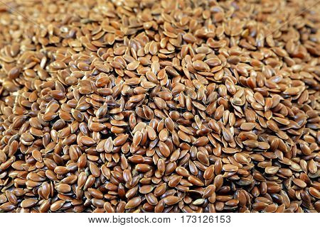 Seeds of flax photographed in close up