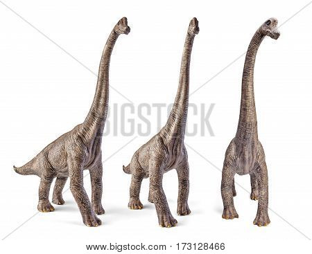 Set of Brachiosaurus, dinosaurs toy isolated on white background with clipping path. Dinosaur from the Jurassic Morrison Formation of North America.