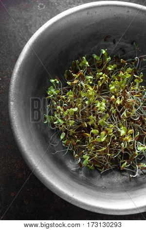 Flax sprouts in a bowl on a metal table closeup vertical