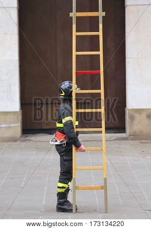 many firemen during rescue operations with a big wooden ladder
