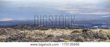 Scenic Landscape At Volcanic Area Of Sierra Negra