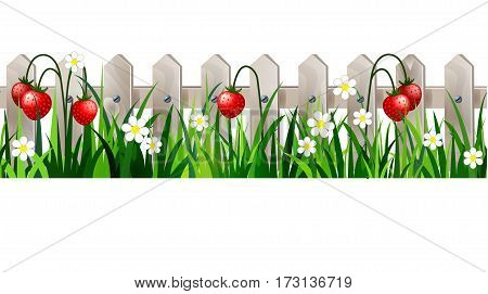 Green Grass with strawberries on white wooden rustic fence background seamless isolated clip art vector on white